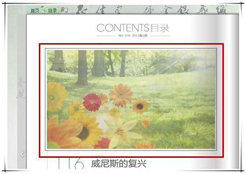 翻页电子相册中添加图片播放器