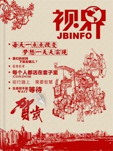《视界03期》山东青鸟软通新年电子内刊