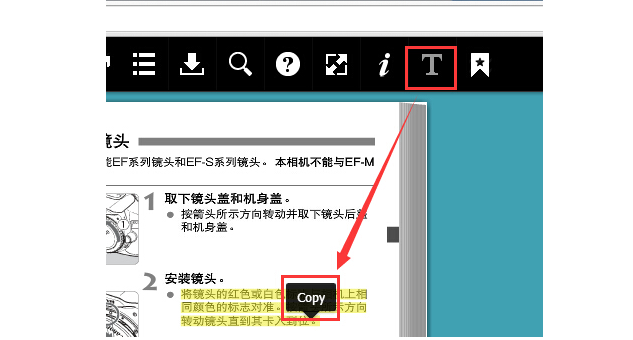 互动杂志制作 文本复制按钮