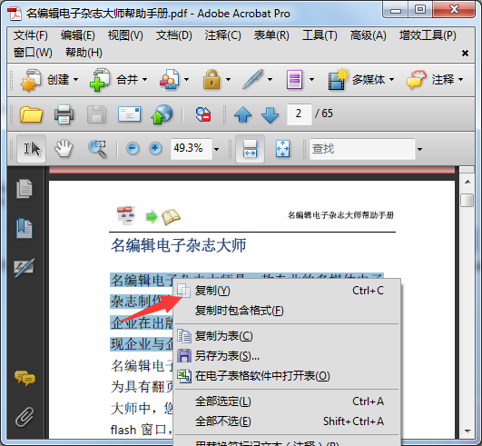 文本复制按钮 电子杂志制作软件